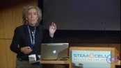 Stem Cells in Silence, Action & Cancer